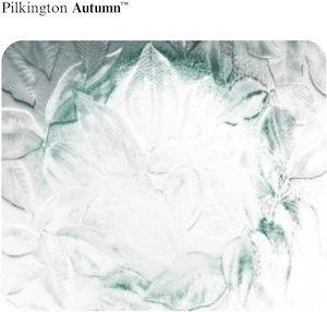 Pilkington Autumn